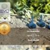 testsieger olivenöl bei evo gold